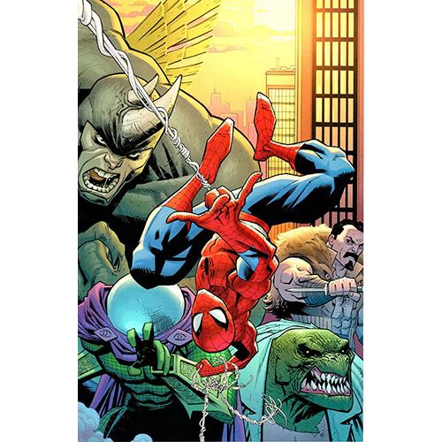 Amazing Spider-Man #1 1:200 Ryan Ottley Virgin Retailer Incentive