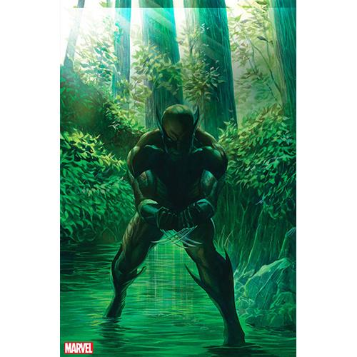 Wolverine #1 Alex Ross 1:300 Retailer Incentive