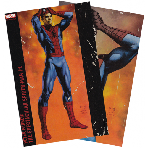 Peter Parker: The Spectacular Spider-Man #1 Boston Comic Con Combo Edition